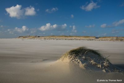 Beach close to island city Wittün, Amrum