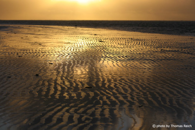 Low tide Amrum