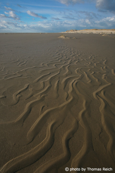 Mud flat Amrum