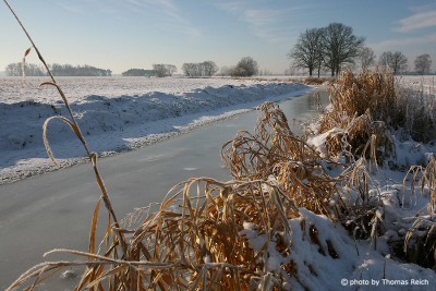 Havelland im Winter Brandenburg