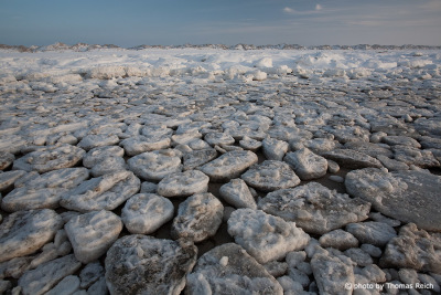 Ice floes North Sea coast on the island of Amrum
