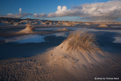 Dunes at Wittdün Amrum