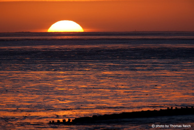 Sunrise mud flat Amrum