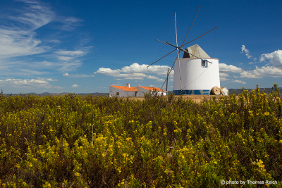 Windmill in Alentejo, Portugal