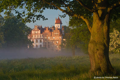 Schloss Basedow Morgennebel