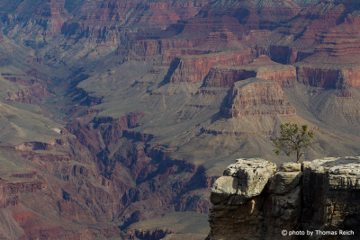 Grand Canyon Fluss Arizona