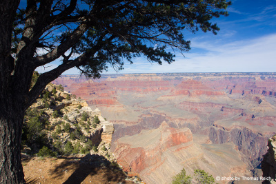 View to Grand Canyon Amercia