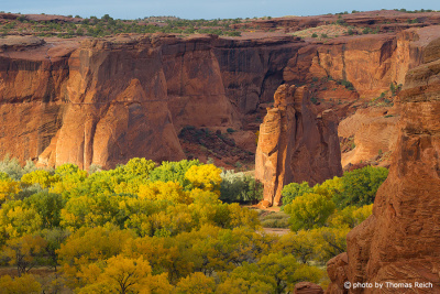 Canyon de Chelly with trees