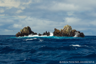 Dirty Rock, Cocos Island